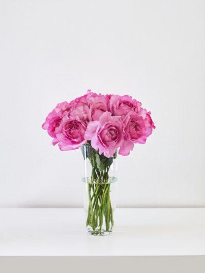 Пионовидная роза Yves Piaget